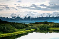 Denali Mountain Landscape 2